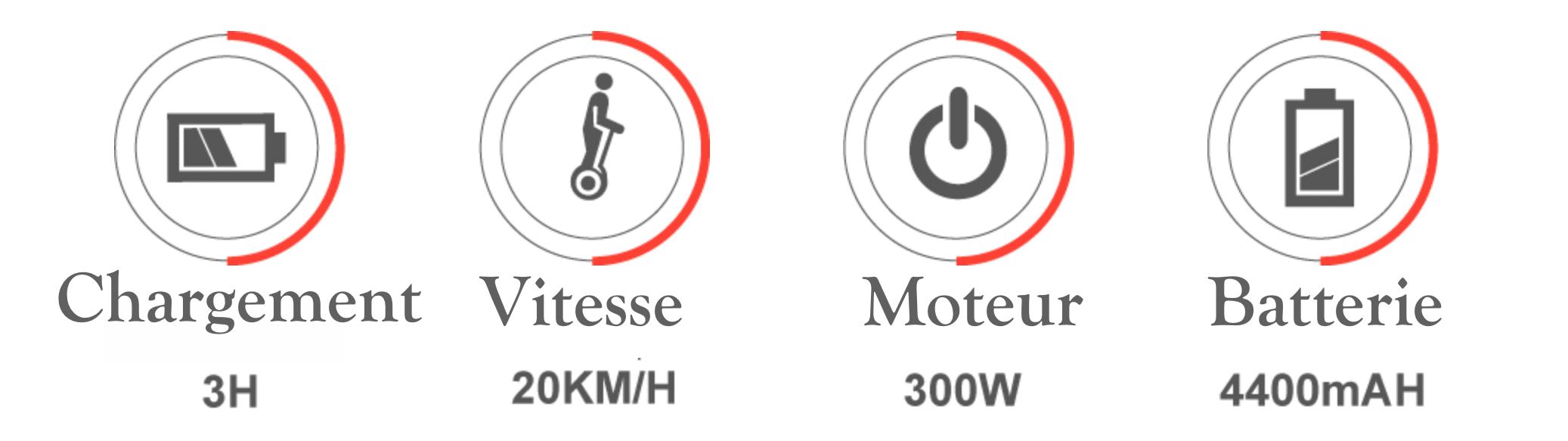 Ebike electrique